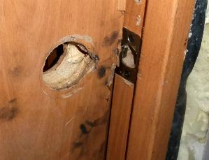 Ремонт входных деревянных дверей